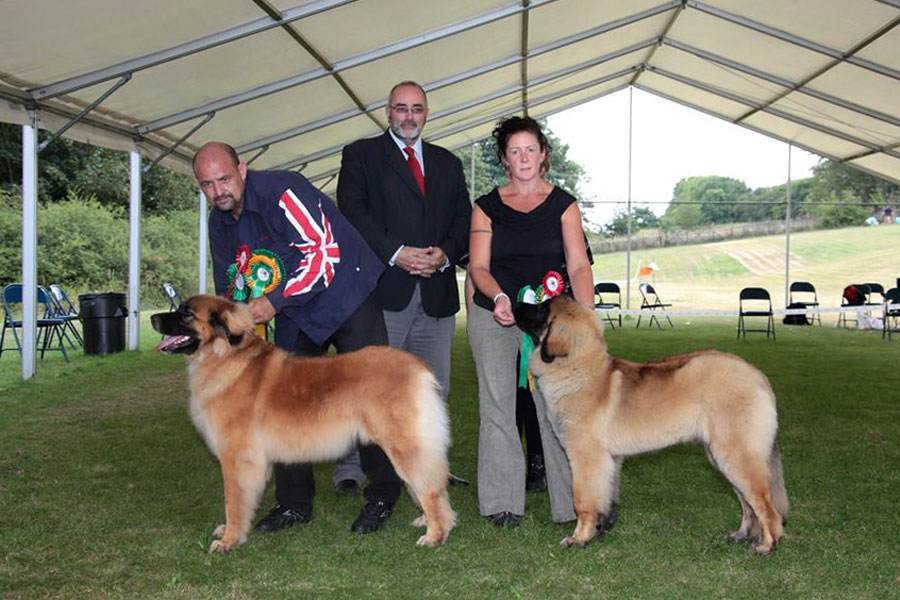 2014 Open Show BIS and BPIS