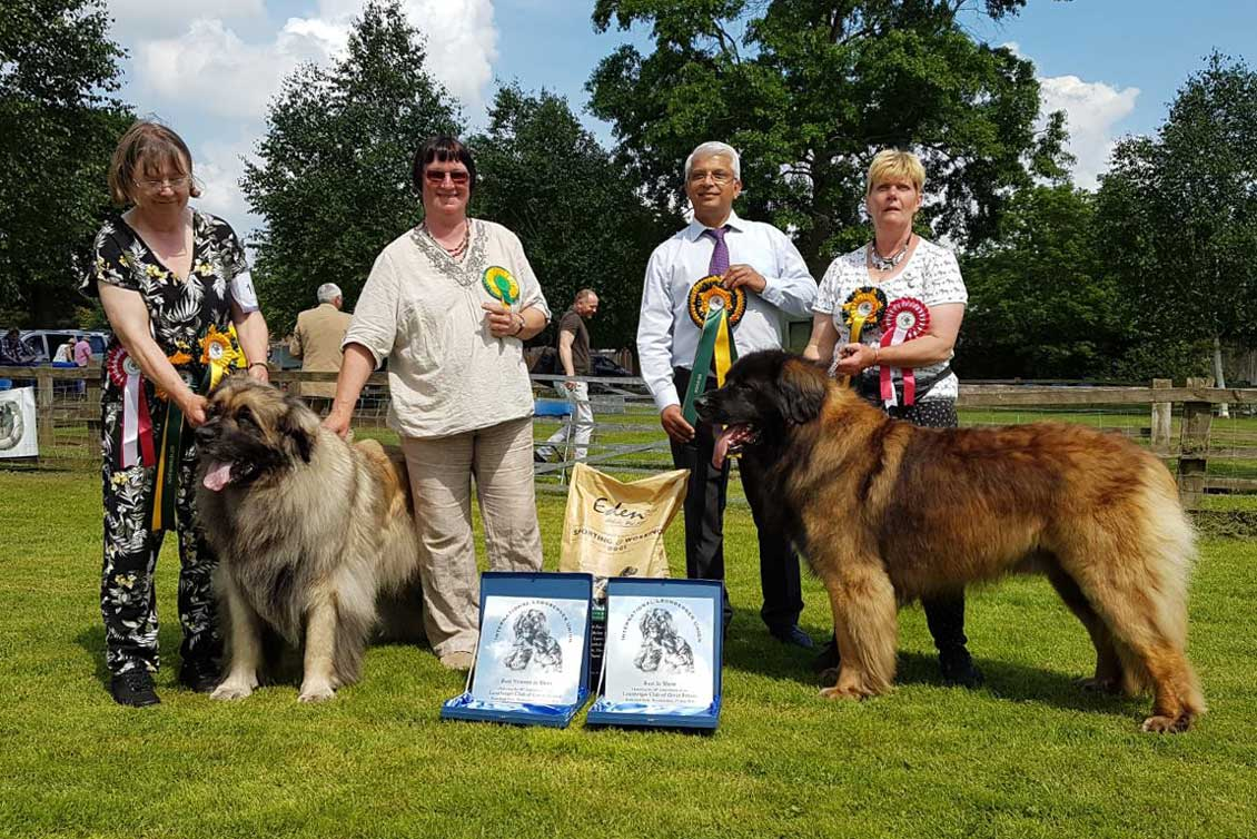 2018 Championship Show winners with judges