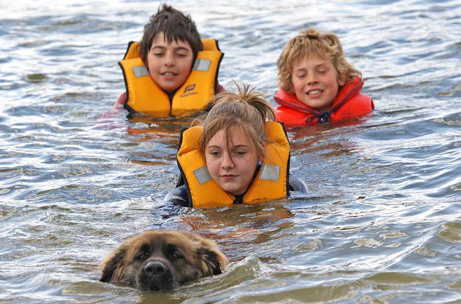 Children being towed in water by a Leonberger